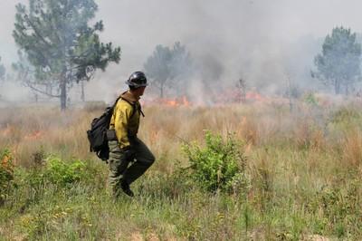 Prescribed Fire in Southeast